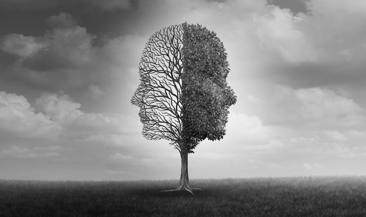 A tree in the shape of two faces back to back; the side of the tree on the left is without leaves, and the side on the right is full of leaves. The image is in black and white.